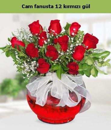 Cam içerisinde 12 adet kırmızı gül  14 şubat sevgililer günü çiçek