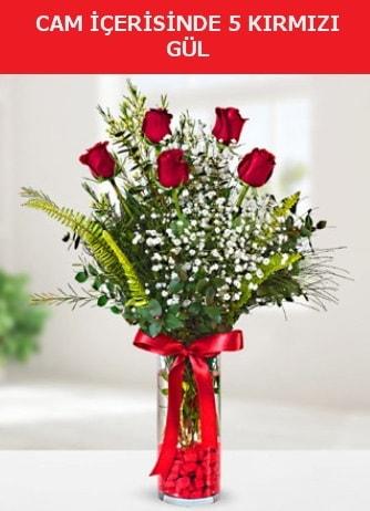 Cam içerisinde 5 adet kırmızı gül  Kocaeli uluslararası çiçek gönderme