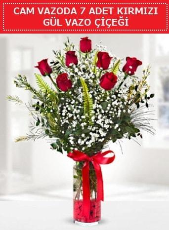Cam vazoda 7 adet kırmızı gül çiçeği  Kocaeli çiçekçi mağazası