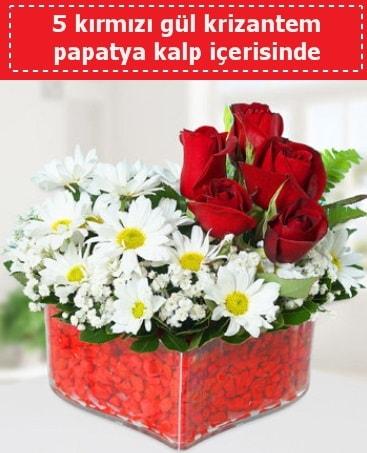 mika kalp içerisinde 5 kırmızı gül papatya  Kocaeli internetten çiçek satışı