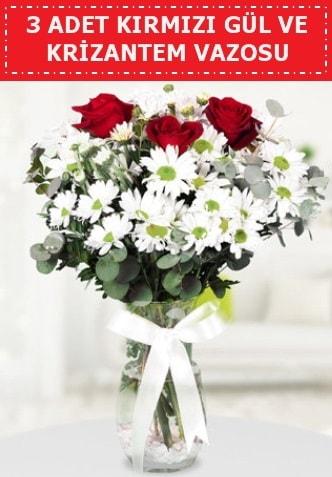 3 kırmızı gül ve camda krizantem çiçekleri  Kocaeli internetten çiçek satışı