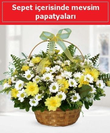 Sepet içerisinde mevsim papatyaları  Kocaeli online çiçek gönderme sipariş