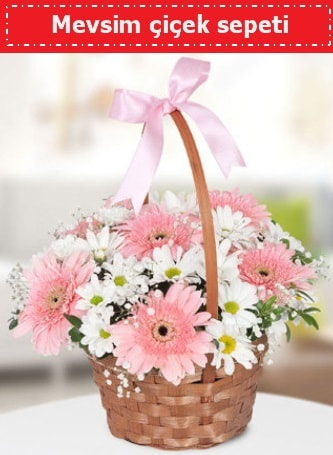 Mevsim kır çiçek sepeti  Kocaeli çiçek siparişi vermek