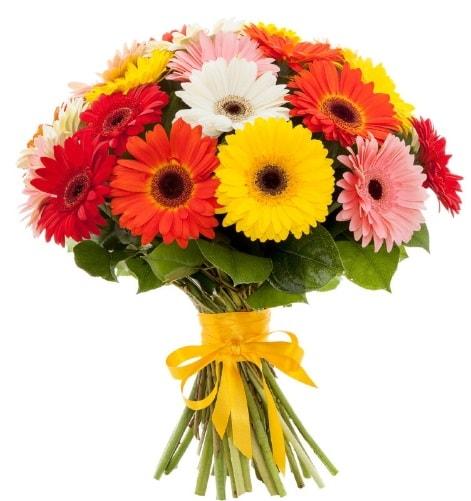 Gerbera demeti buketi  Kocaeli internetten çiçek siparişi