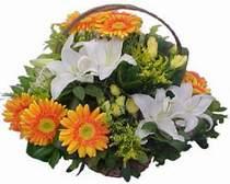 Kocaeli çiçek , çiçekçi , çiçekçilik  sepet modeli Gerbera kazablanka sepet
