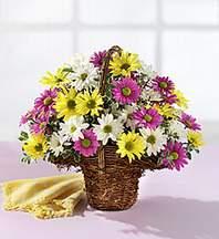 Kocaeli anneler günü çiçek yolla  Mevsim çiçekleri sepeti